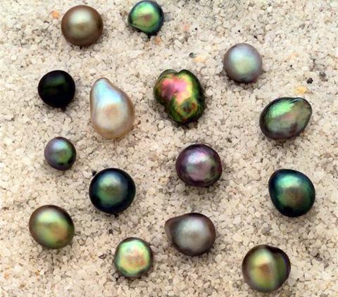Какой бывает жемчуг: виды и их происхождение